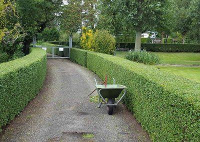 vgarden hoveniers tuinonderhoud